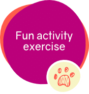icons-offer-fun-activity-exercise