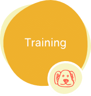 icons-offer-training-dogs