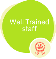 icons-offer-well-trained-staff